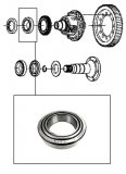 ROLLER  BEARING <br> With Cap <br> Differencial Right Side