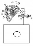O-RING <br> Pump Drive Gear Housing